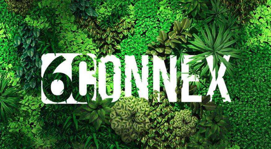 6connex sustainability webinar